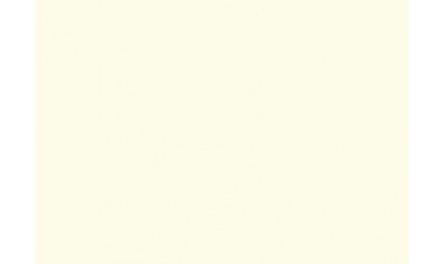 Ламинированный ДСП Egger W 980 Белый платиновый